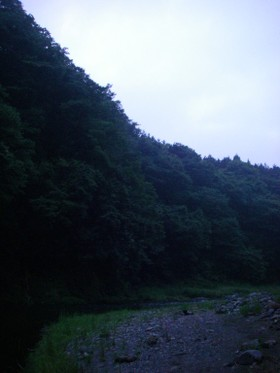 090620katsura_2