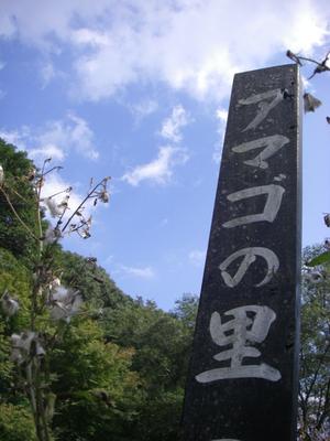 111009kawazu